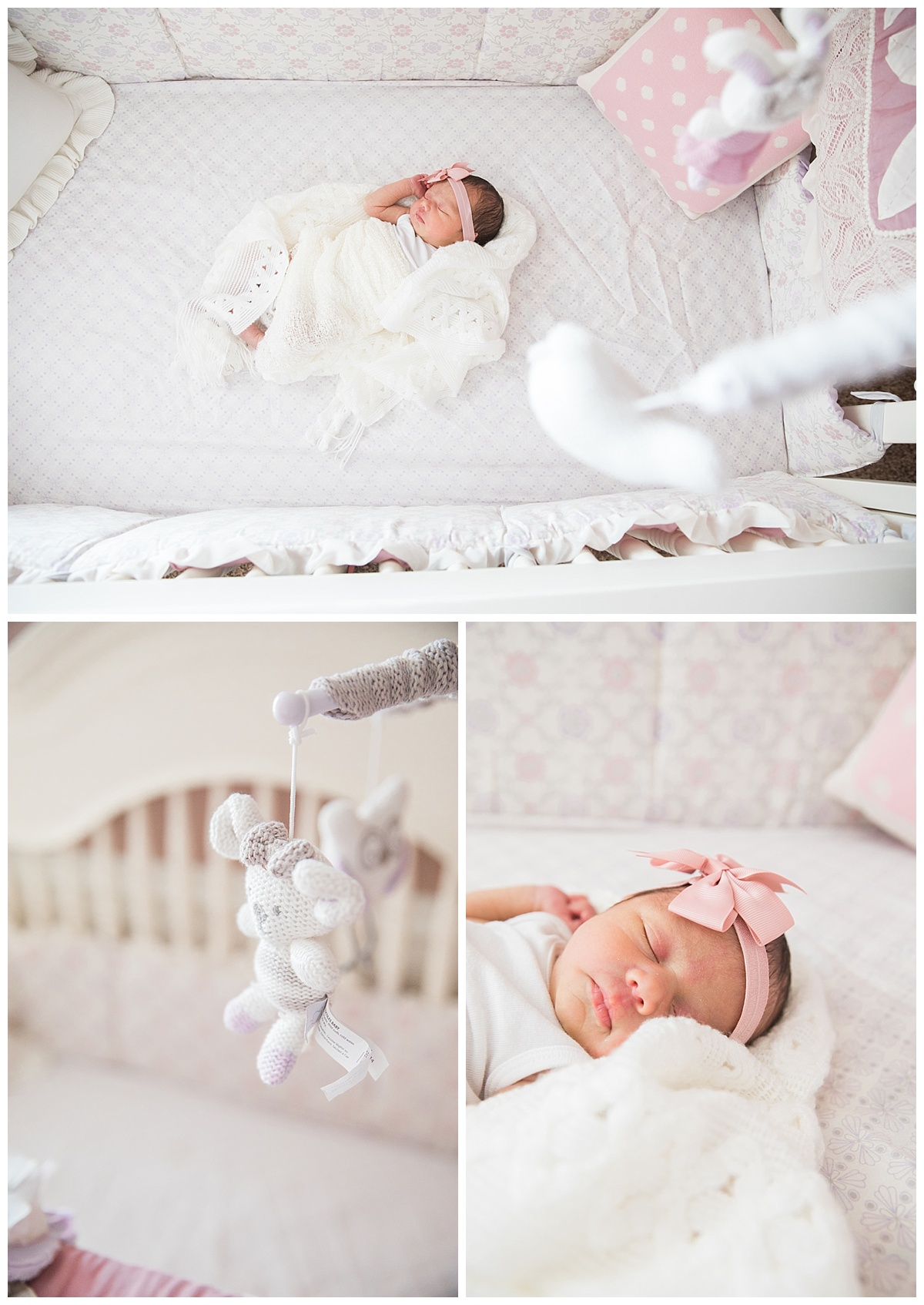 el paso at home newborn session