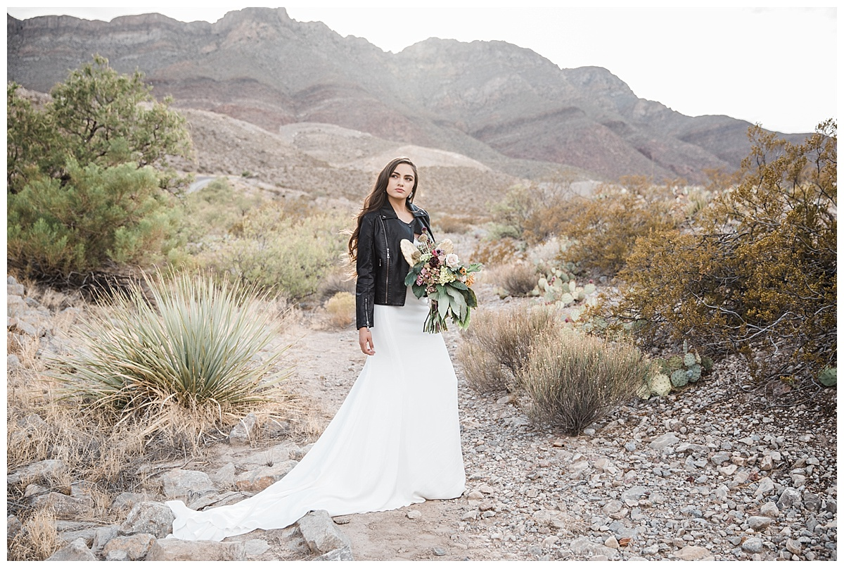 el paso wedding shoot