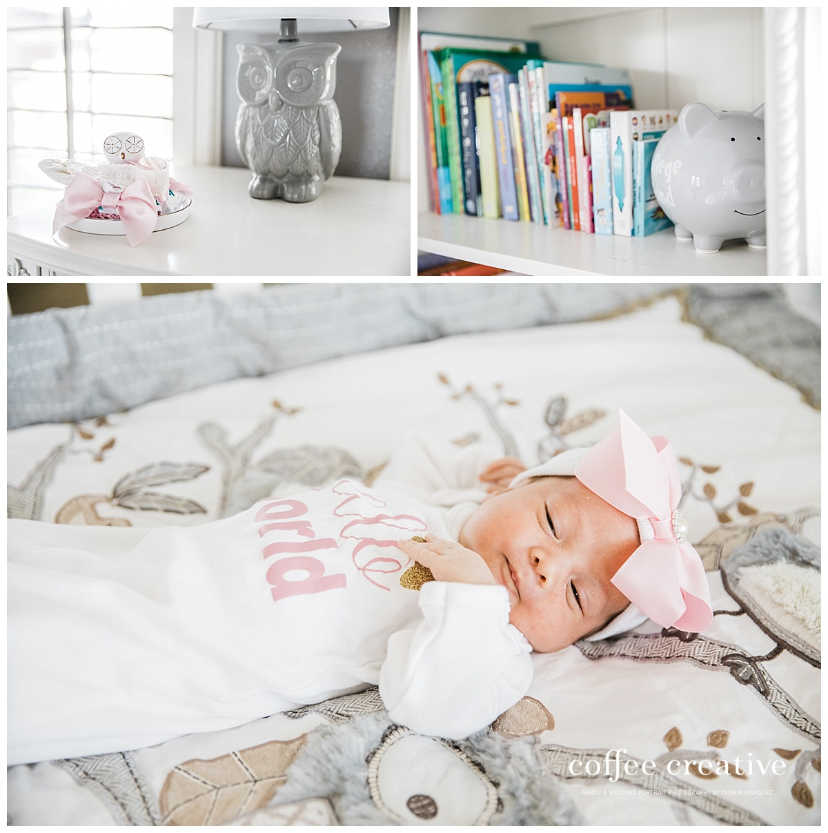 el paso newborn photographer