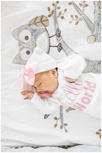 el paso newborn photographer