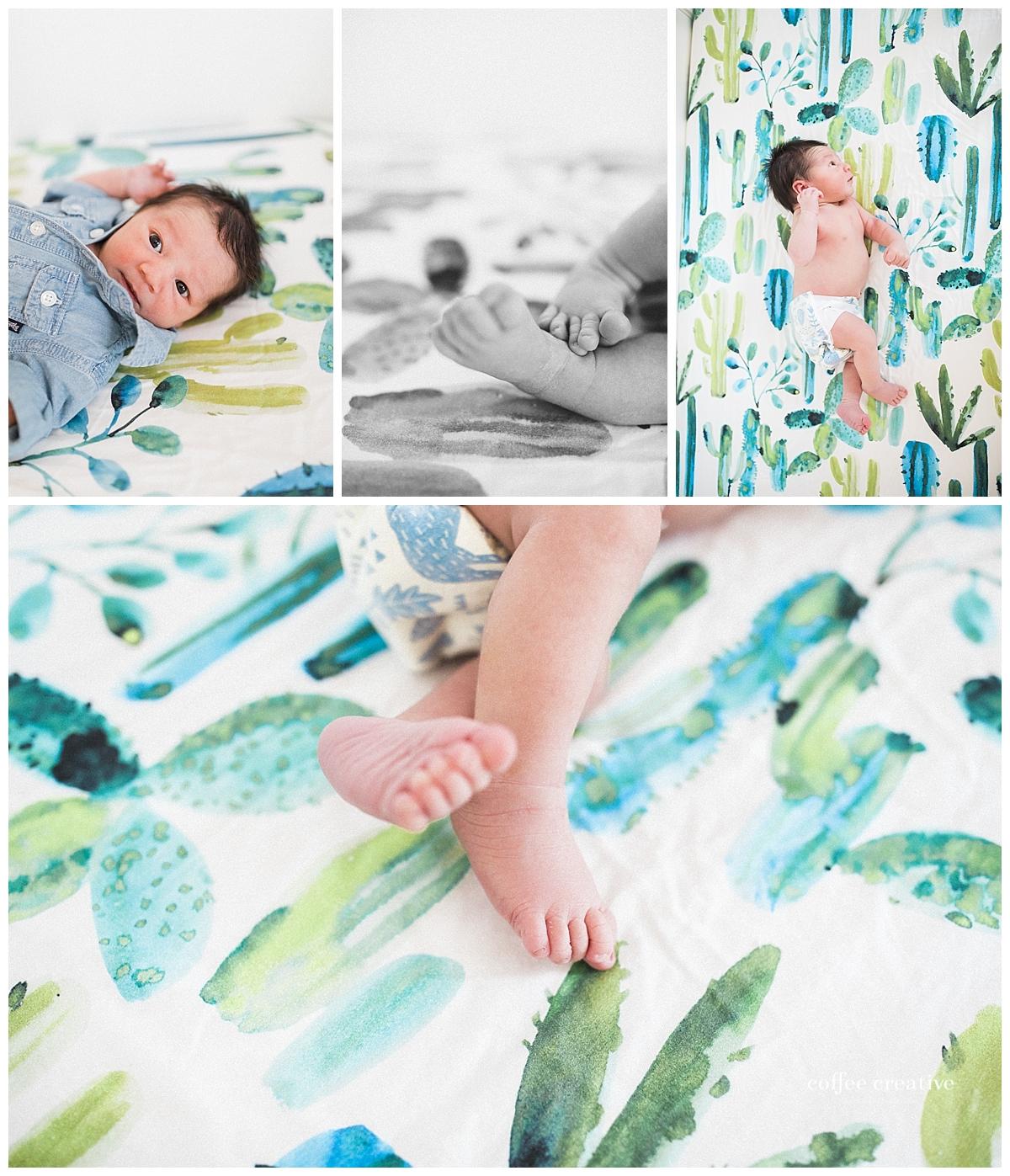 el paso newborn session, southwest nursery theme