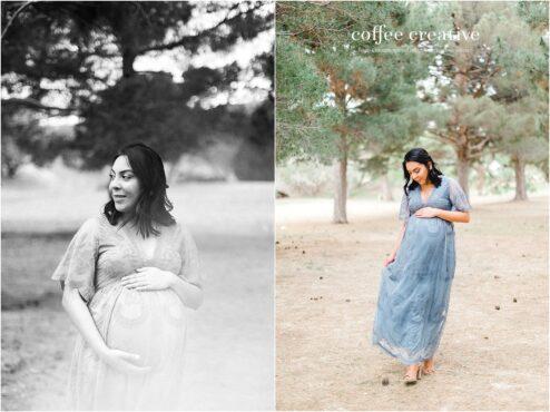 el paso rose garden maternity session