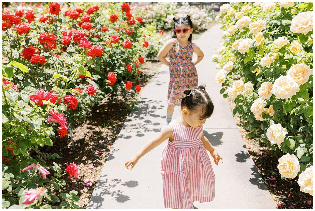 Things to do in El Paso with Kids, el paso rose garden, el paso photographer